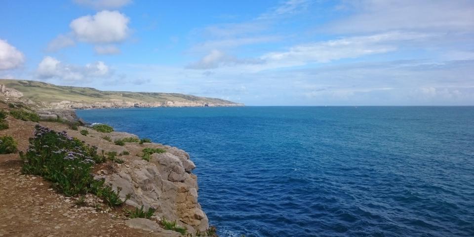 Dorset coast (c) Jonathan Porter