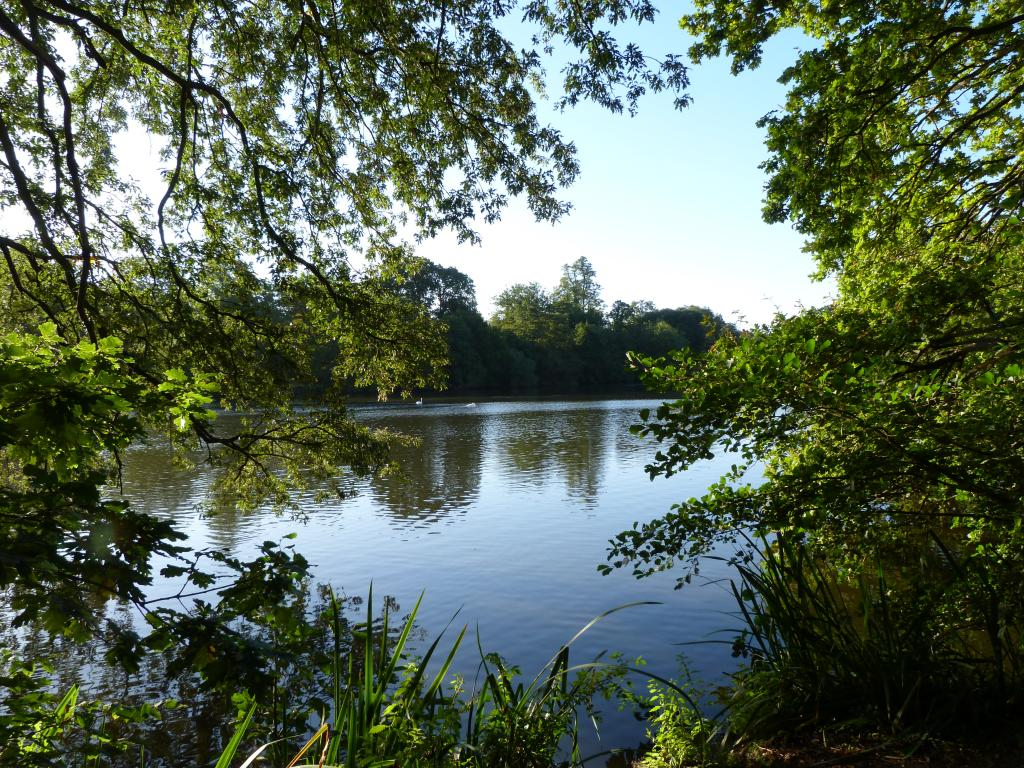 Whiteknights Lake (Creative Common Flick, M. Sandilands)