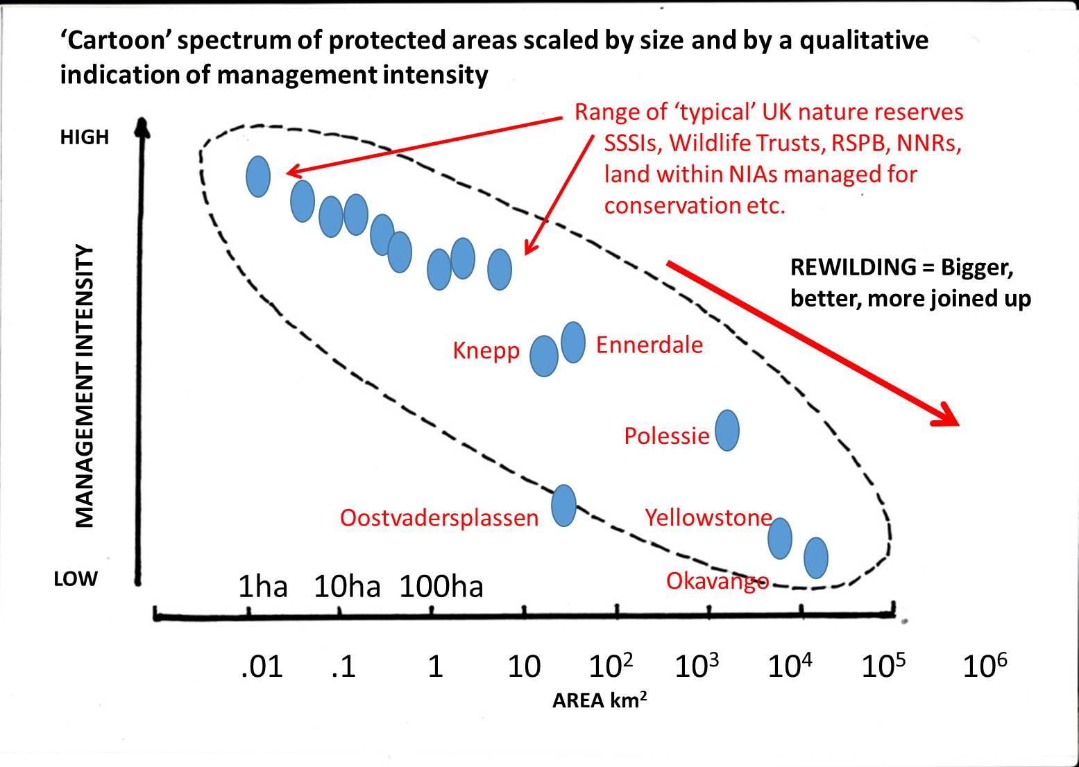 Image result for rewilding spectrum