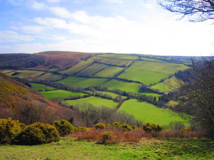 field patterns near Brendon, Devon (Credit: Chris McAuley, via geograph.com)