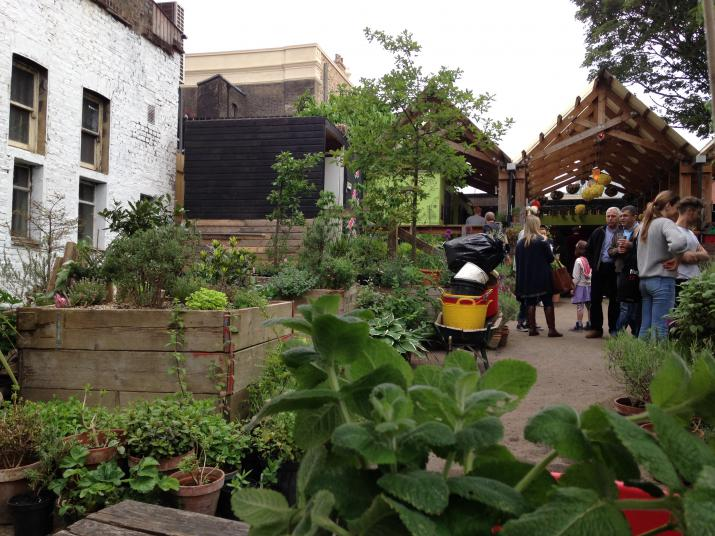 The garden at Eastern Curve, Hackney provides local people contact with nature (Credit: Rosie Whicheloe)