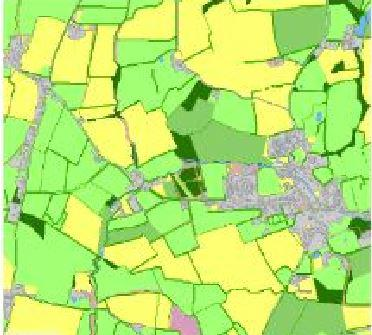 Landcover Map with mapped hedgerows (Credit: Author)