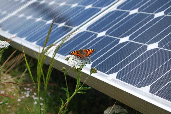 Why The Future Of Roofs Is Biosolar Ialeuk