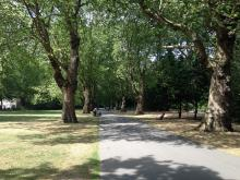 cycle walking route through Southwark Park, photo credit: Rosie Whichloe