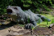 Dinosaur (Credit: PublicDomainPictures)