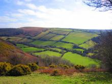 field patterns near Brendon, Devon (Credit: Chris McAuley, via geograph.com)