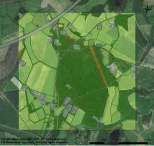 Aerial image with GIS overlay. Image: Jessica Neumann