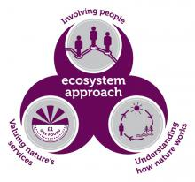 Ecosystem Service: Valuing nature's services, understanding how nature works and involving people (Credit: JNCC)